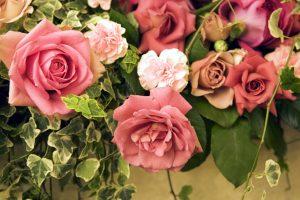 flower  wallpaper A29
