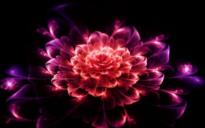 flowers digital art
