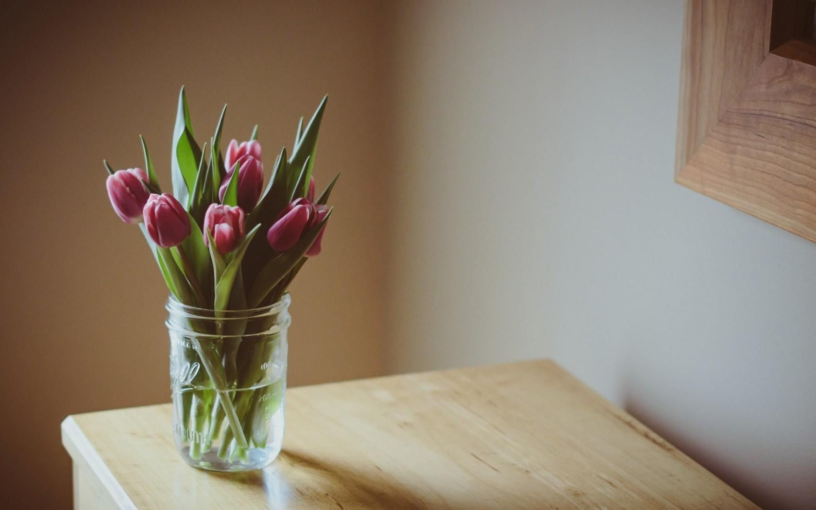 flowers pink tulips vase table