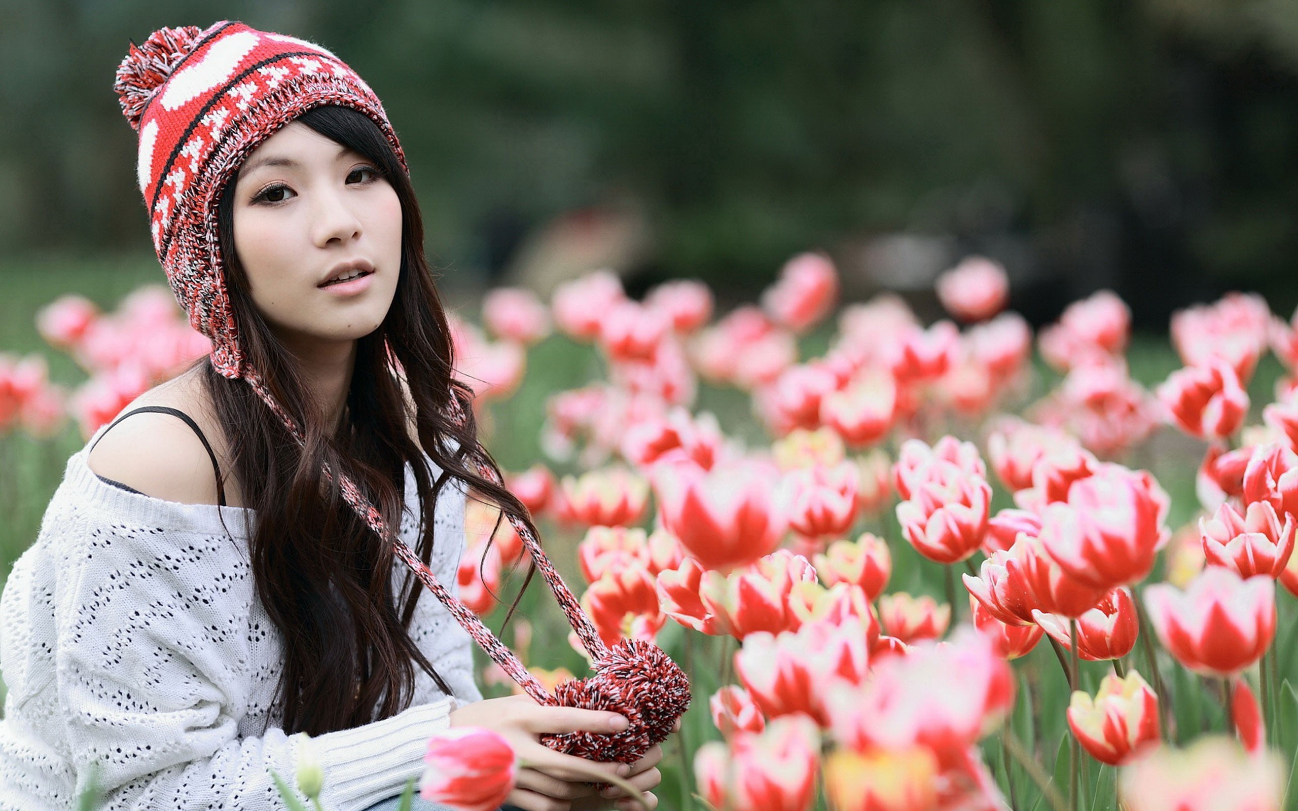 flowers tulips girl