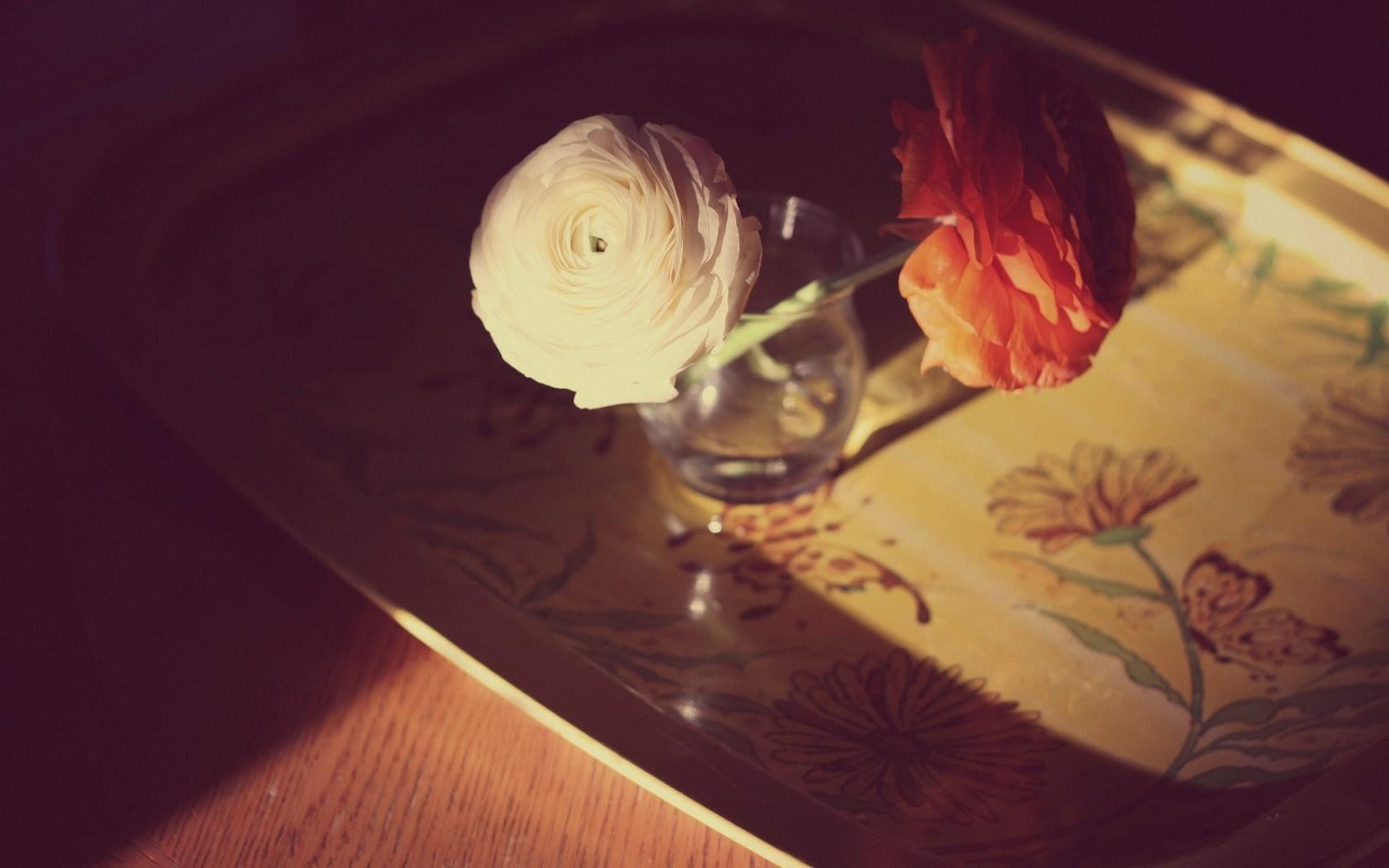flowers vase macro photo