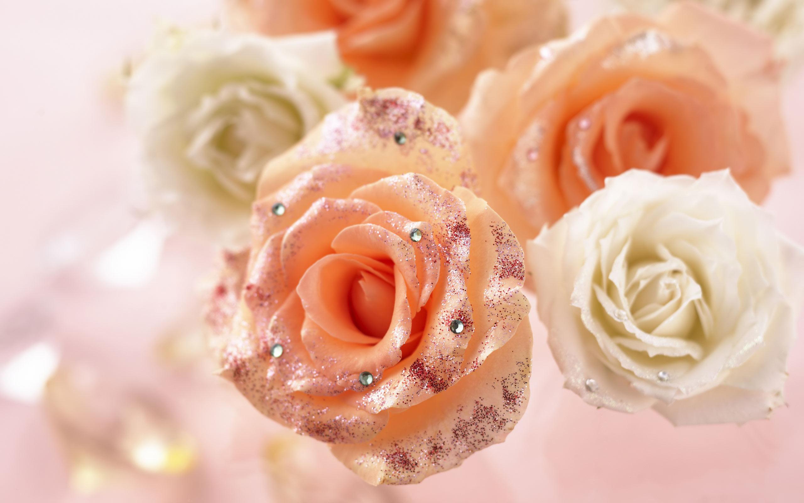 flowers wallpaper A26