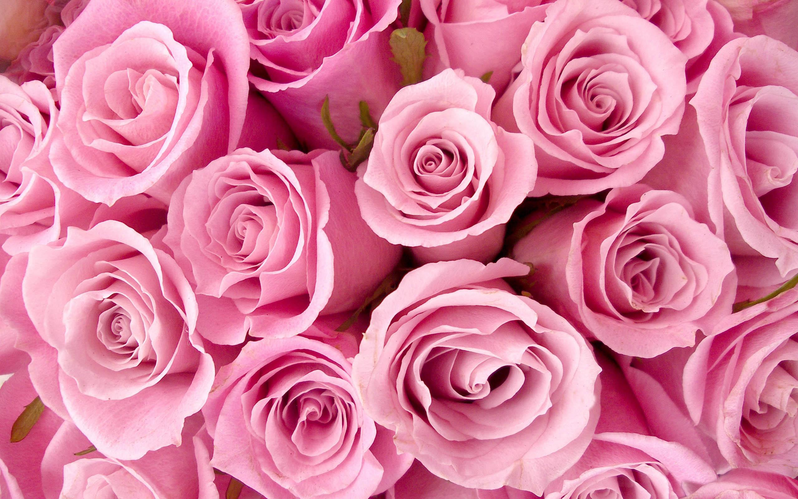 www.wallpapersxplore.blogspot.com