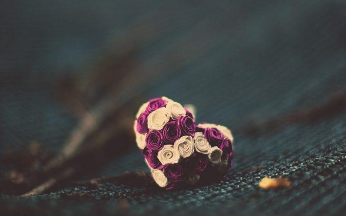 love rose wallpaper