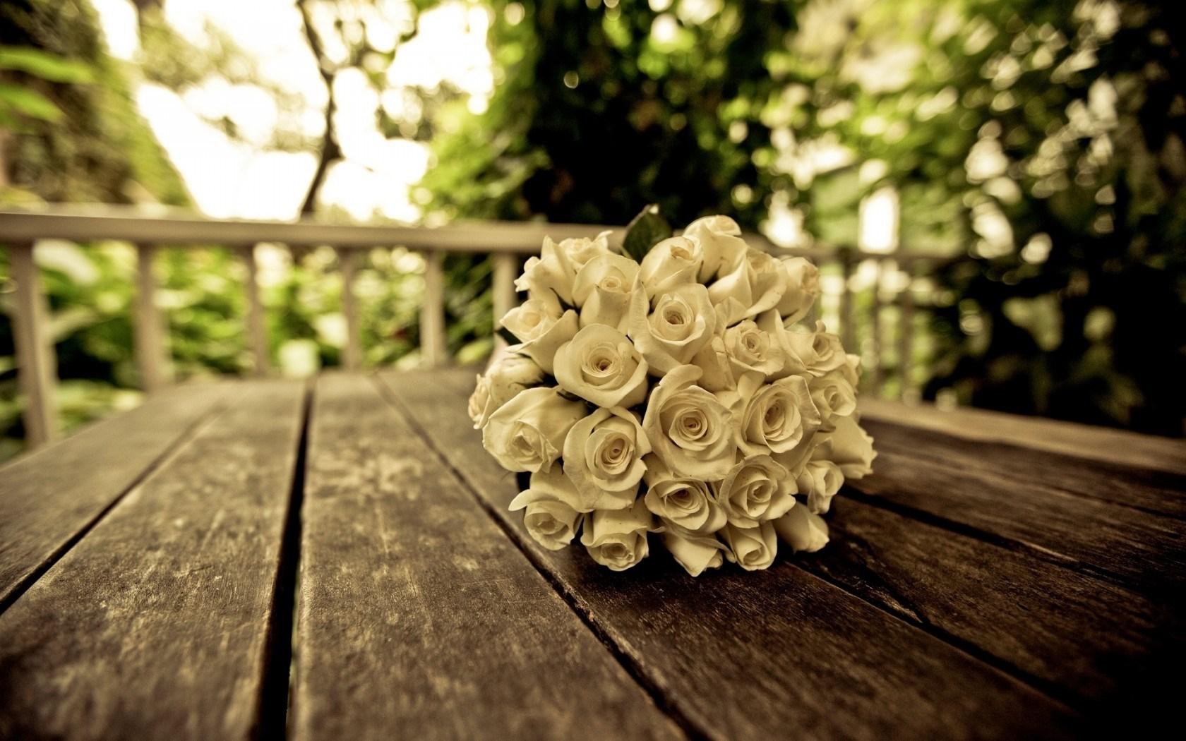 love roses wallpaper
