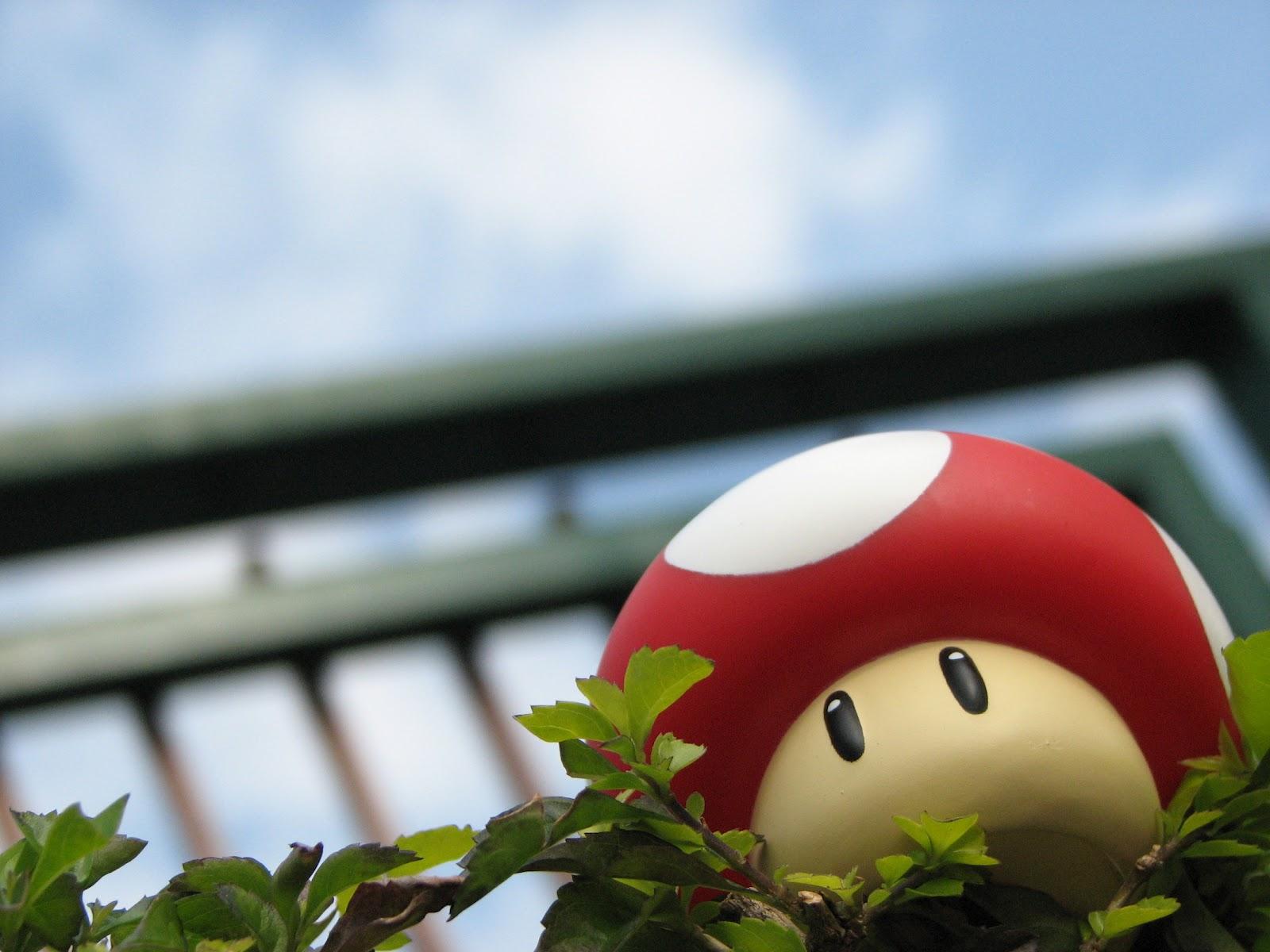 mario mushroom wallpaper