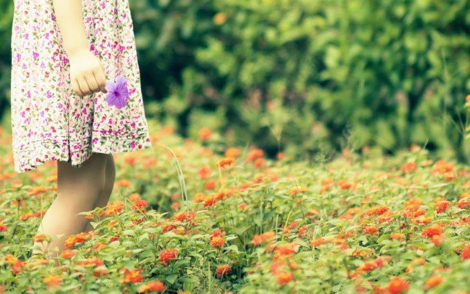 mood girl field flowers