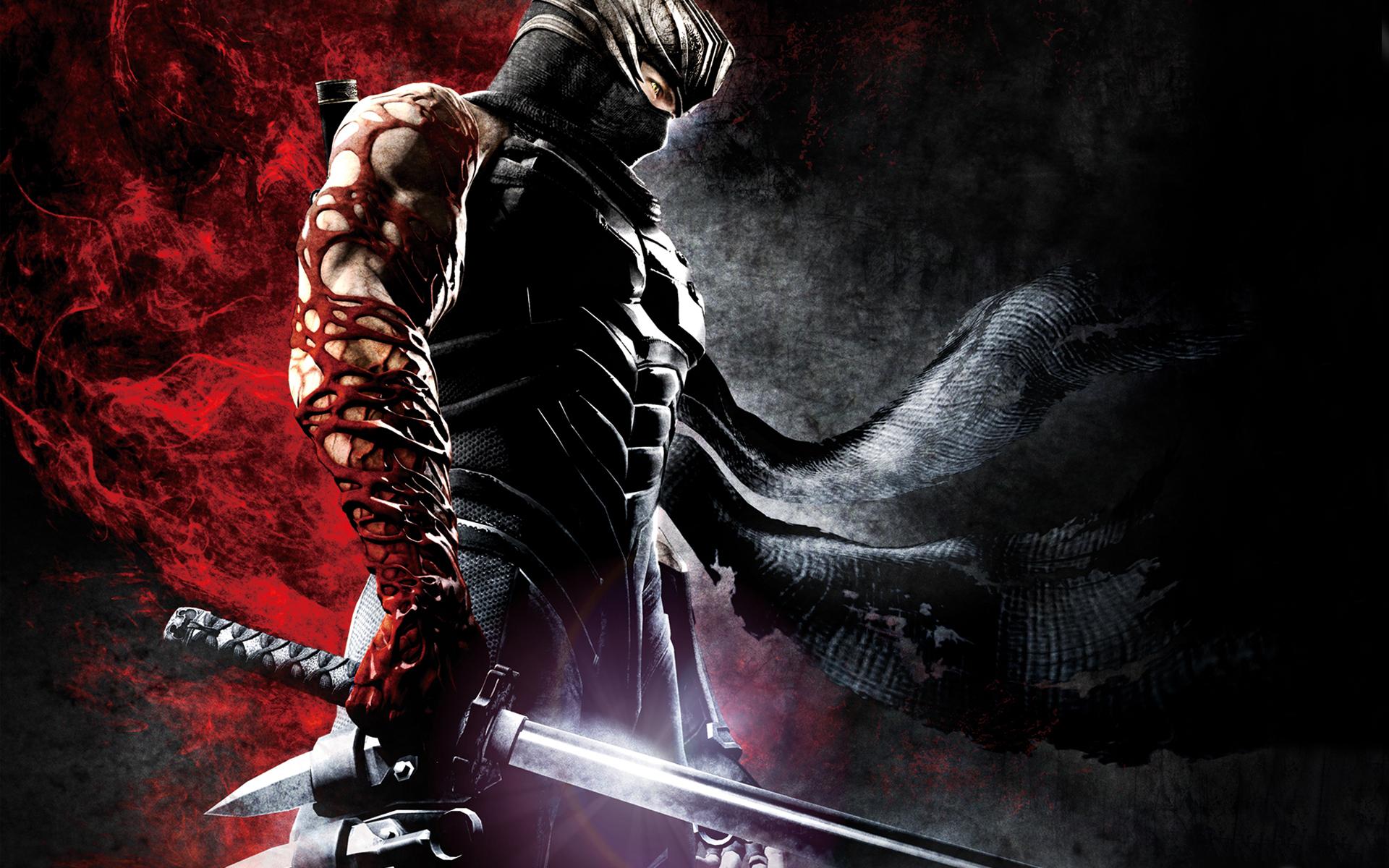 ninja gaiden wallpaper A3