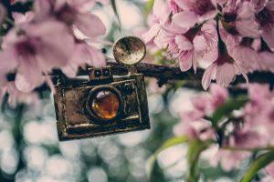 pendant camera flowers pink