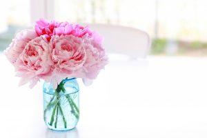 peonies flowers pink jar