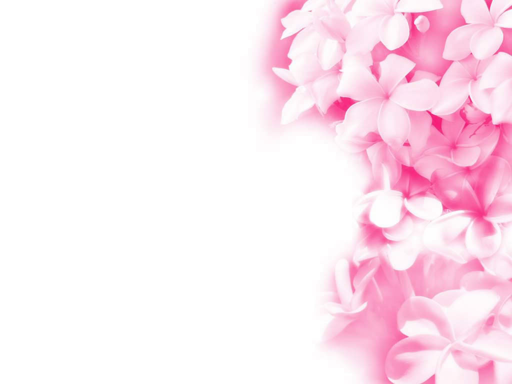 picture of pink flowers - HD Desktop Wallpapers | 4k HD