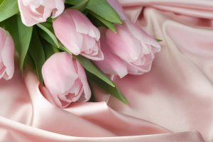 pink rose wallpaper cute
