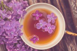 purple flower A10