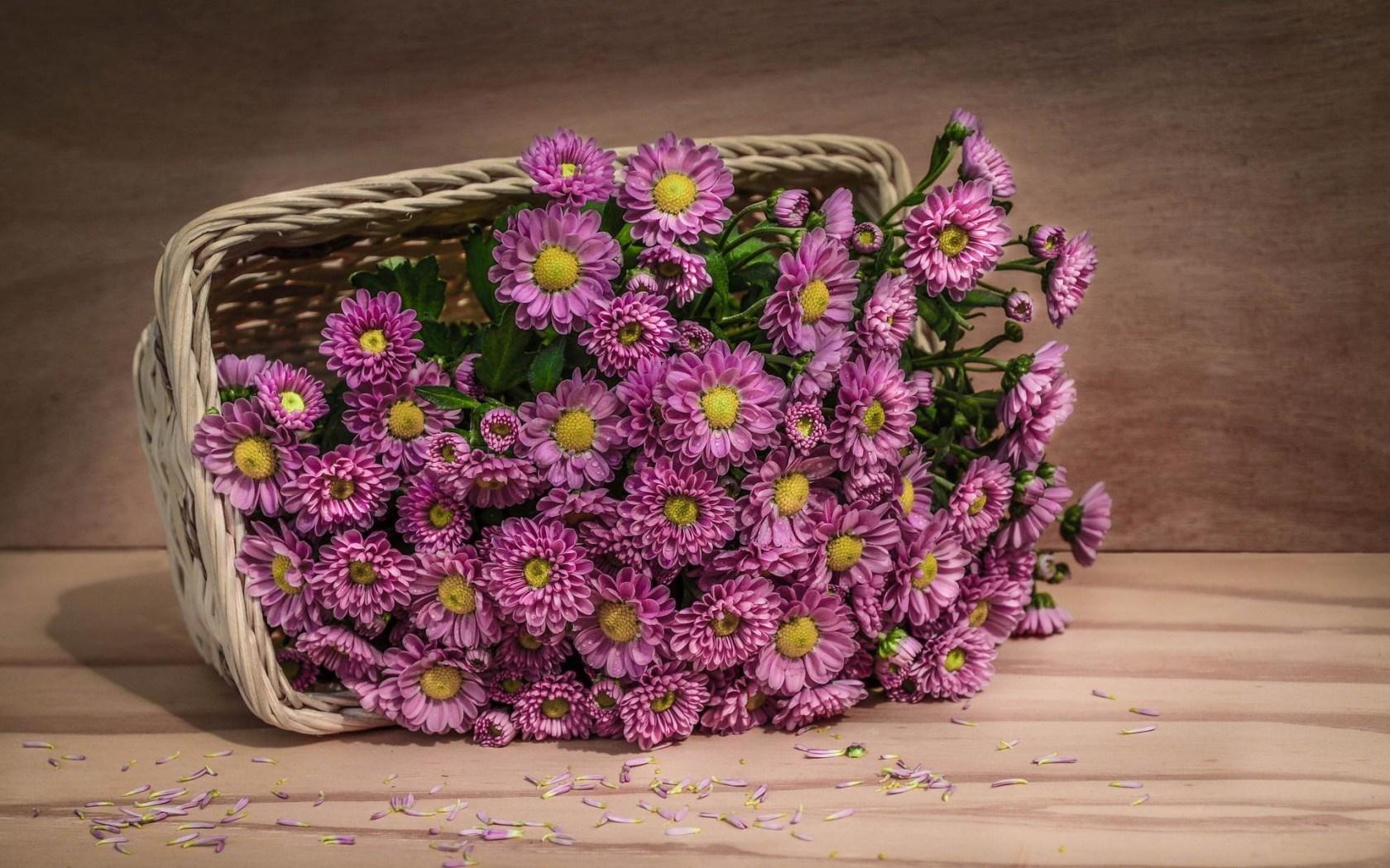 purple flowers basket