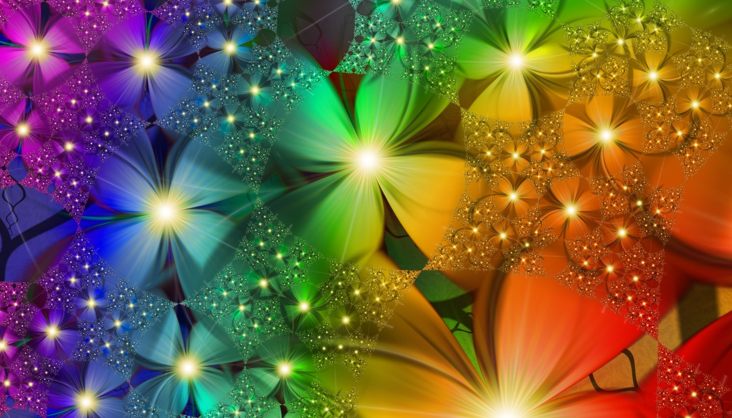 rainbow flowers image