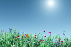 spring backgrounds A5