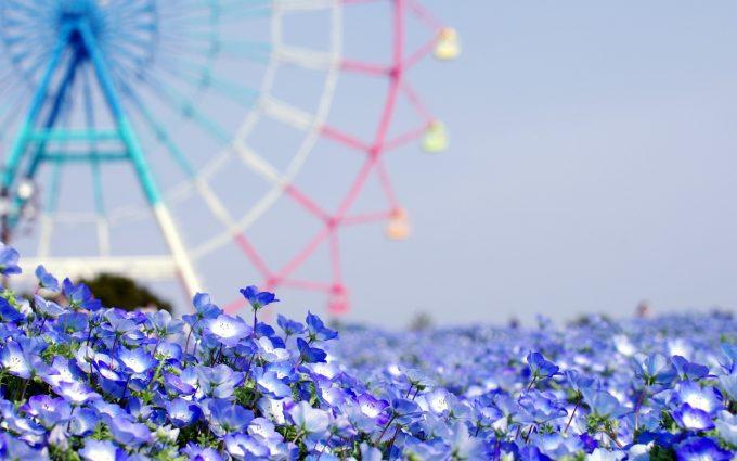 summer flowers mobile