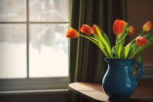 tulips vase hd