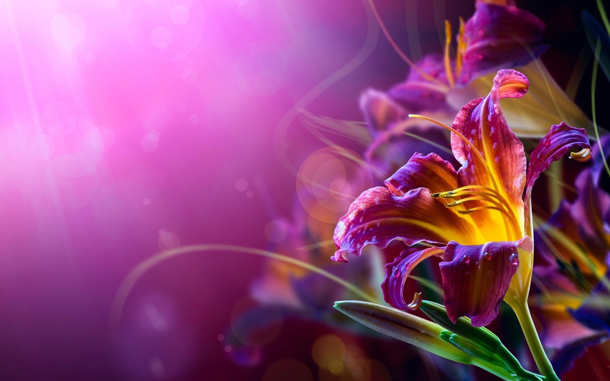 violet wallpaper A4