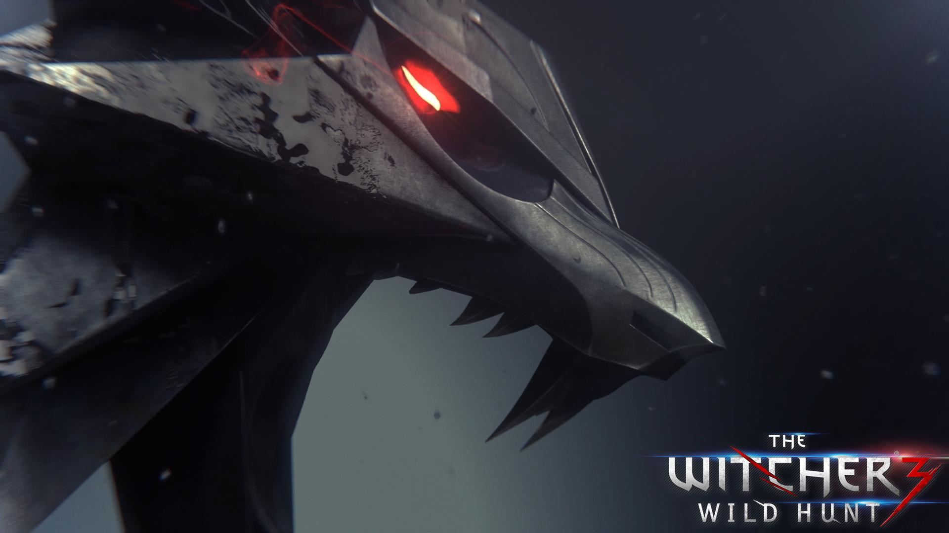 witcher 3 wild hunt game