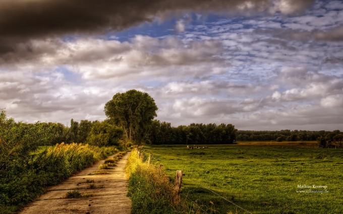 country wallpaper farm