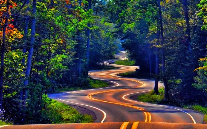 Forest Wallpapers HD road path
