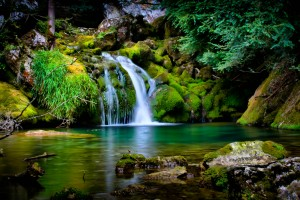 Forest Wallpapers HD waterfalls