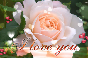 I Love You Wallpapers HD A4