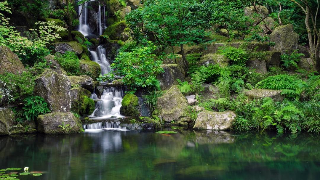 jungle backgrounds wallpapers desktop a14 pixelstalk waterfall nature water 4k pond lush nadyn источник biz