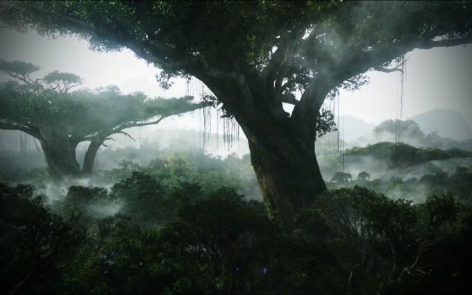 Jungle Wallpapers HD avatar