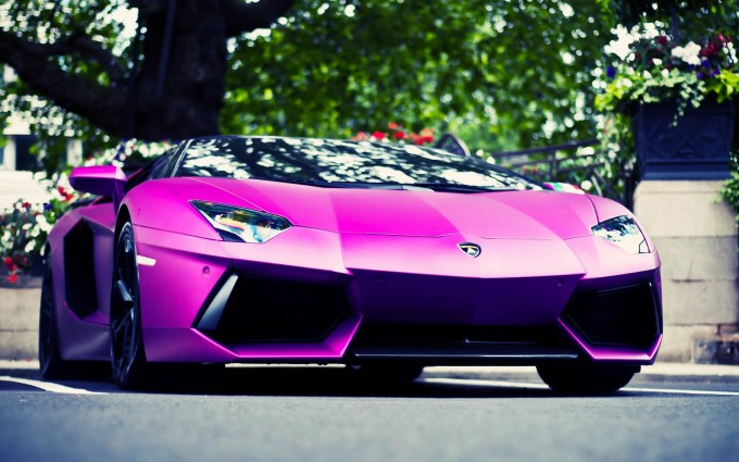 Lamborghini Aventador Wallpapers HD A50 Pink - lamborghini aventador desktop sports cars, race cars, luxury cars, expensive cars, wallpapers pictures images free download