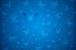 Plain Wallpapers HD blue butterfly