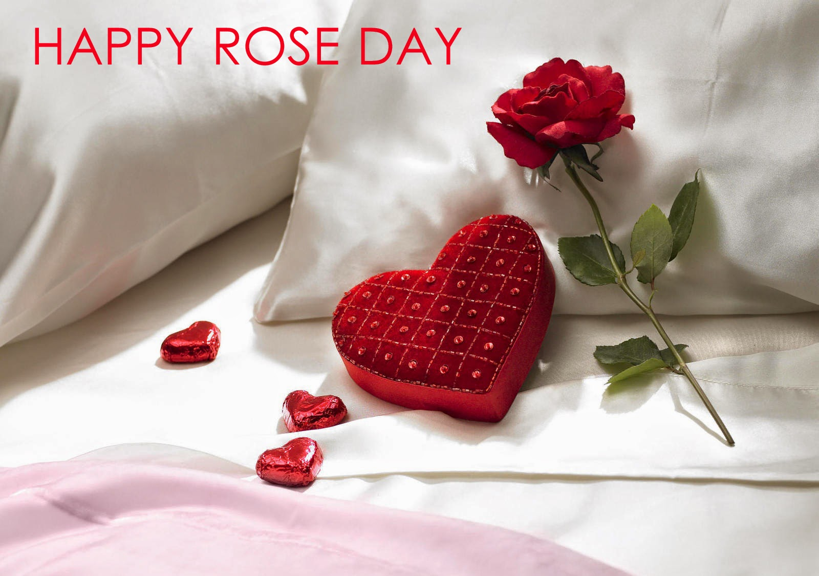 Red Roses Wallpapers HD A39 rose day