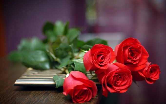 Red Roses Wallpapers HD A39 greeting cards