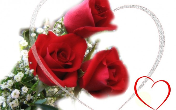 Red Roses Wallpapers HD A39 love sign