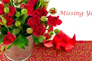 Red Roses Wallpapers HD A39 missing you