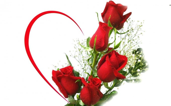 Red Roses Wallpapers HD A39 heart 2