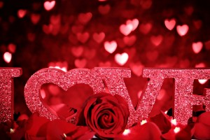 Red Roses Wallpapers HD A39 love roses