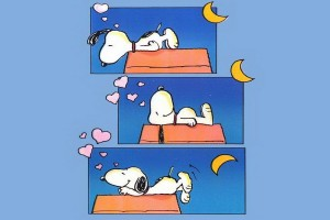 Snoopy Wallpapers HD night sleep