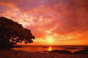 tropical sunset wallpaper HD2