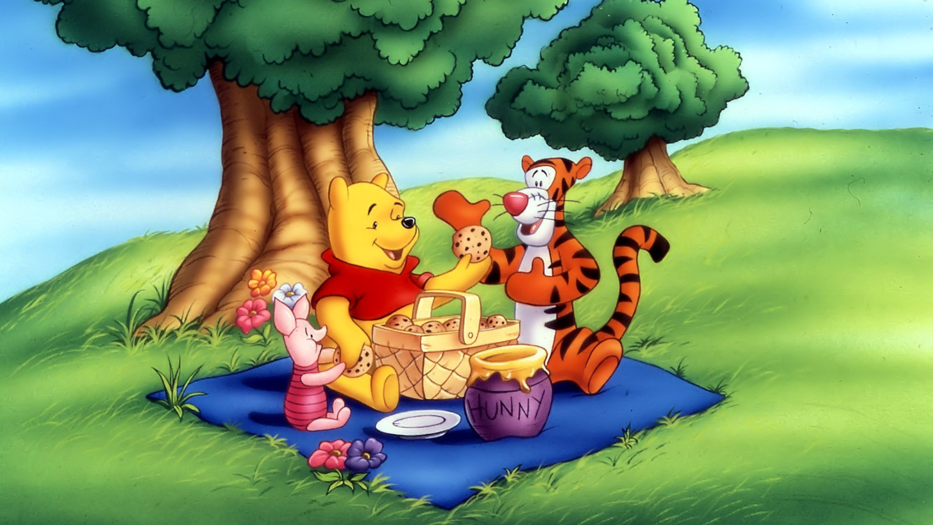 Winnie The Pooh Wallpapers HD cookies