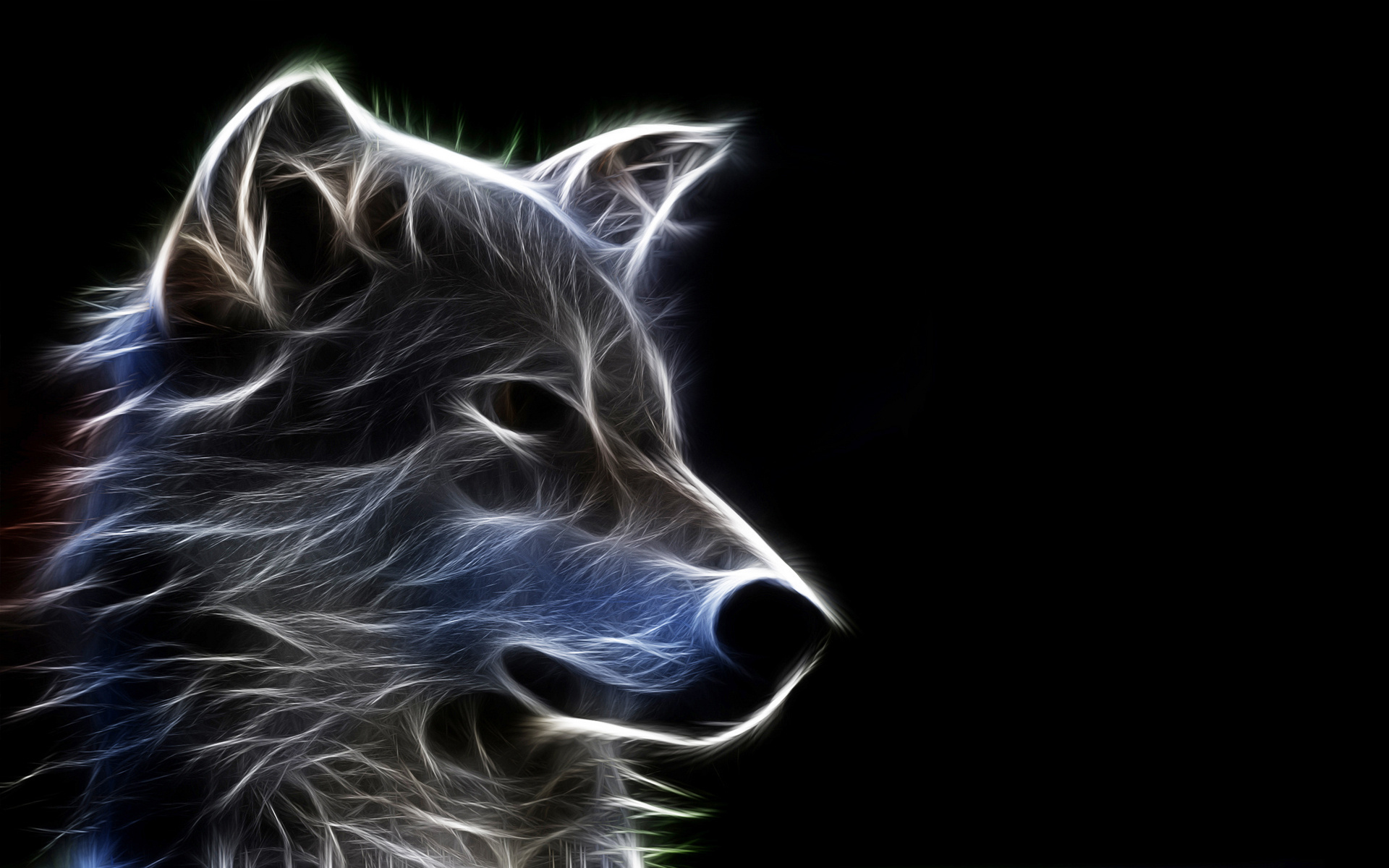 Wolf Wallpapers HD 3d