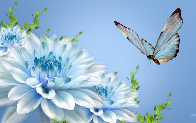 butterfly wallpaper light blue