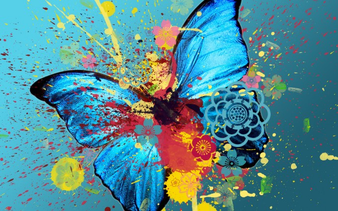 butterfly wallpaper multicolor