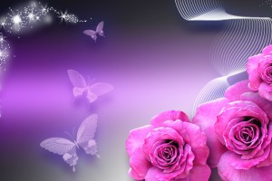 butterfly wallpaper purple pink