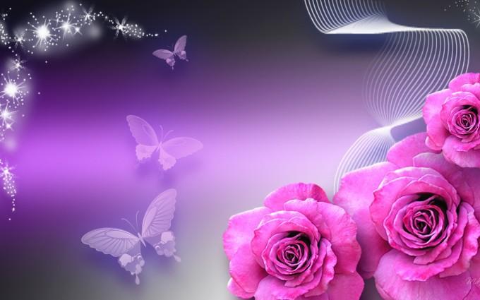 butterfly wallpaper purple pink