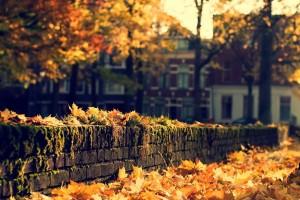 fall wallpapers bricks Autumn