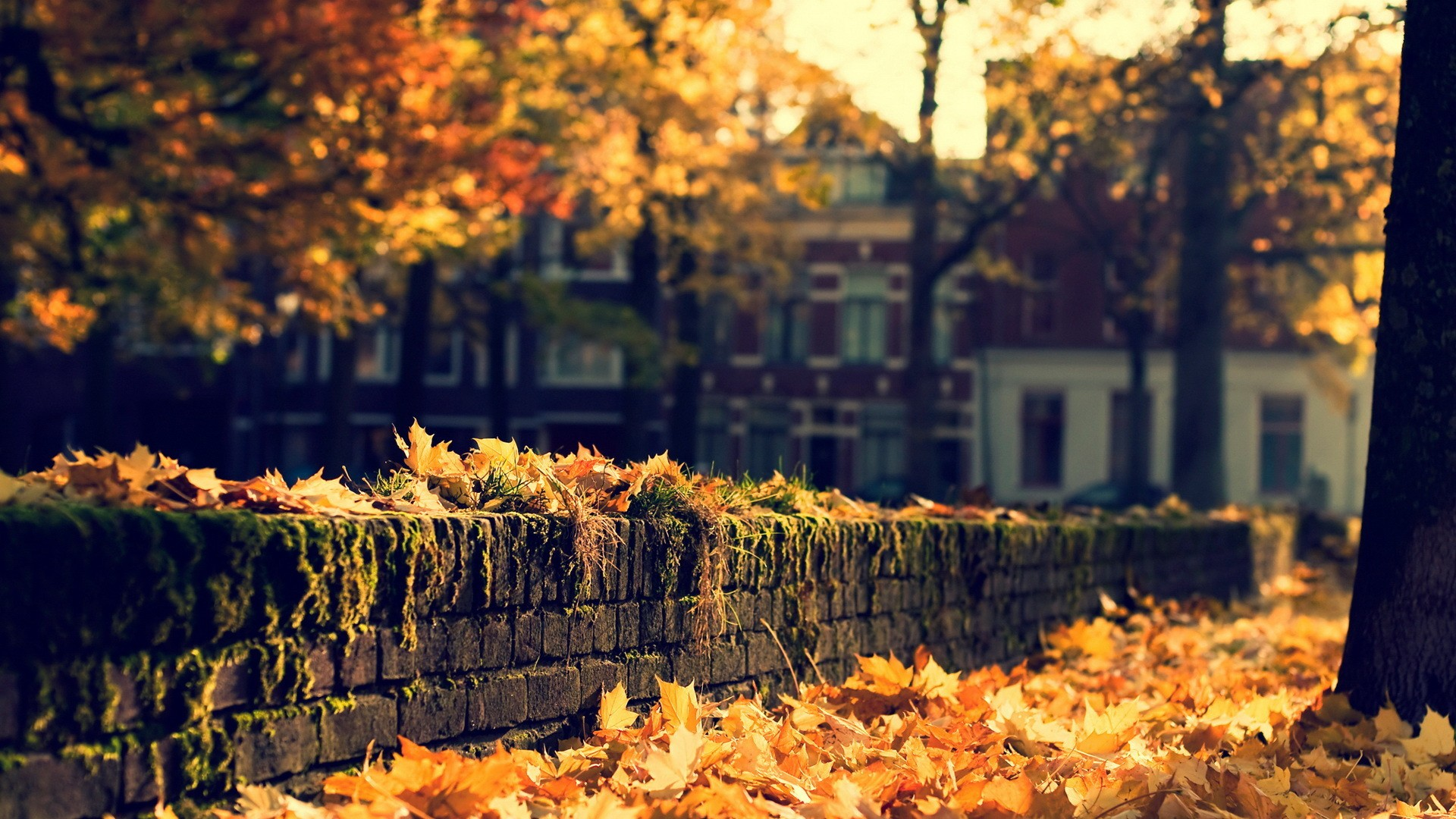 fall wallpapers bricks Autumn