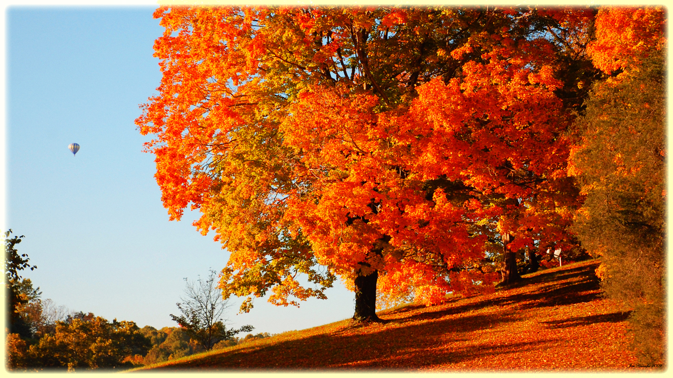 fall wallpapers cool Autumn