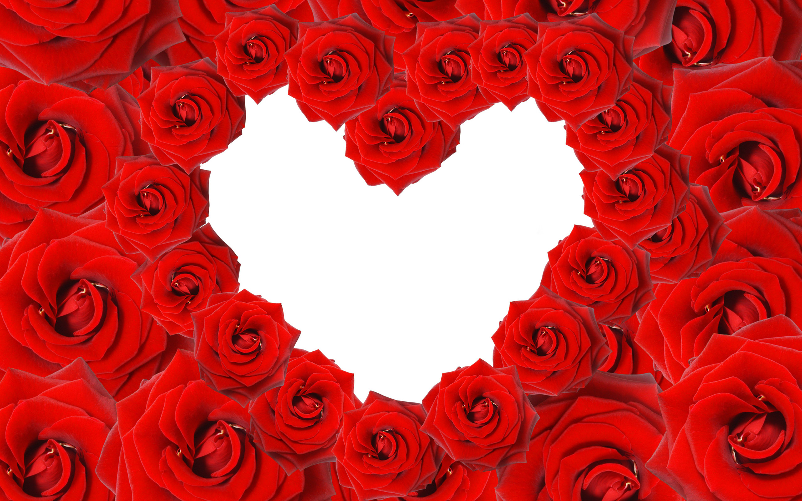 heart wallpapers roses